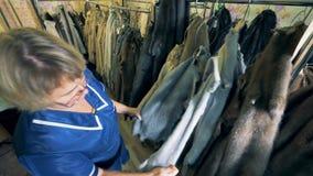 Μια γυναίκα ελέγχει τη ζωική γούνα σε μια κρεμάστρα, κλείνει επάνω φιλμ μικρού μήκους