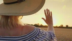Μια γυναίκα εξετάζει το ηλιοβασίλεμα πέρα από τον τομέα σίτου Επεκτείνει το χέρι του στις ακτίνες ήλιων ` s απόθεμα βίντεο