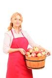 Μια γυναίκα εργαζόμενος που κρατά ένα σύνολο καλαθιών των μήλων Στοκ Φωτογραφία
