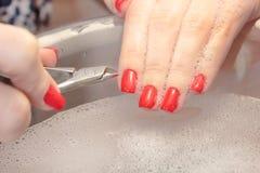 Μια γυναίκα κάνει ένα μανικιούρ με ένα εργαλείο Κόκκινα καρφιά που ενυδατώνονται σε ένα λουτρό με το νερό Στοκ φωτογραφίες με δικαίωμα ελεύθερης χρήσης
