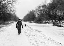 Μια γυναίκα περπατά κάτω από το παγωμένο κανάλι towpath στοκ εικόνες