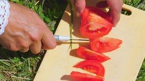 Μια γυναίκα προετοιμάζει τη σούπα και κόβει τις ντομάτες σε έναν πίνακα κουζινών στη φύση απόθεμα βίντεο