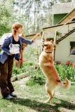 Μια γυναίκα ταΐζει ένα σκυλί στοκ φωτογραφία με δικαίωμα ελεύθερης χρήσης