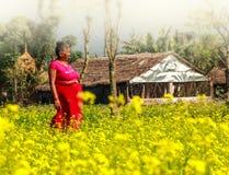 Μια γυναίκα Nepali στον τομέα της μουστάρδας σε Chitwan, Νεπάλ Στοκ Εικόνα