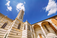 Μια γωνία που πυροβολείται ευρεία του Di Σιένα της Σάντα Μαρία Assunta/Duomo καθεδρικών ναών της Σιένα στη Σιένα Στοκ φωτογραφία με δικαίωμα ελεύθερης χρήσης