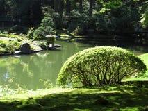 Μια γωνία σε έναν ιαπωνικό κήπο ύφους Στοκ εικόνα με δικαίωμα ελεύθερης χρήσης