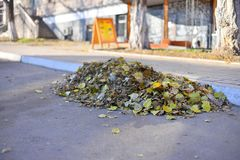 Μια δέσμη των φύλλων φθινοπώρου σκούπισε τους καθαριστές στην άκρη του δρόμου ασφάλτου στο πεζοδρόμιο, μια τρυπώντας βροχερή ημέρ Στοκ φωτογραφία με δικαίωμα ελεύθερης χρήσης