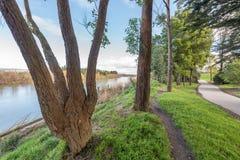Μια διάβαση πεζών μέσω ενός πάρκου στη βόρεια Νέα Ζηλανδία Palmerston στοκ εικόνες