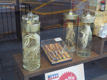 Μια εικόνα του ginseng που προσφέρεται για την πώληση κοντά σε Sheung ωχρό στο Χονγκ Κονγκ Στην Κίνα είναι στοκ εικόνες