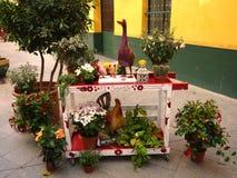 Μια επίδειξη των ζωηρόχρωμων φυτών γλαστρών και των χαριτωμένων διακοσμήσεων στοκ εικόνες με δικαίωμα ελεύθερης χρήσης