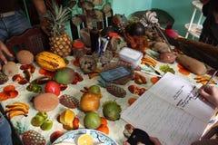 Μια επιλογή των φρούτων στις Καραϊβικές Θάλασσες Στοκ φωτογραφία με δικαίωμα ελεύθερης χρήσης