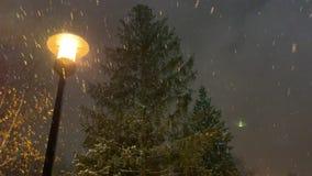 Μια ερυθρελάτη στην οδό νύχτας με τα ανοιγμένα φω'τα χιονοπτώσεις απόθεμα βίντεο