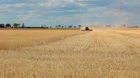 Μια ευρεία άποψη γωνίας ως επιγραφή χρησιμοποιείται σε ένα αγρόκτημα σίτου για να συγκομίσει το ώριμο σιτάρι στοκ φωτογραφίες