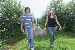 Μια ευτυχής οικογένεια του ελκυστικού καυκάσιου μήλου σύλληψης Στοκ Εικόνες