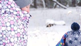 Μια ευτυχή μητέρα και ένα παιδικό παιχνίδι στο χιόνι, ρίχνοντας το στη κάμερα, καθμένος ενάντια σε ένα χειμερινό δάσος ή ένα πάρκ απόθεμα βίντεο