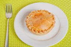 Φυτική πίτα κοτόπουλου Στοκ φωτογραφία με δικαίωμα ελεύθερης χρήσης