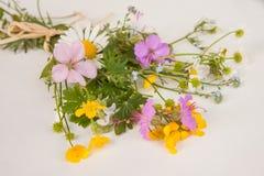 Μια ζωηρόχρωμη ανθοδέσμη των πρόσφατα επιλεγμένων wildflowers Στοκ φωτογραφία με δικαίωμα ελεύθερης χρήσης