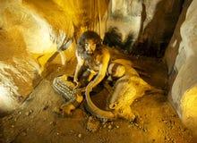 Μια ζωτικότητα στο μουσείο αρχαιολογίας Hatay Στοκ εικόνα με δικαίωμα ελεύθερης χρήσης