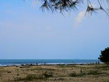 Μια ημέρα στην παραλία στοκ εικόνα με δικαίωμα ελεύθερης χρήσης