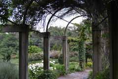 Μια ημέρα στον κήπο Στοκ εικόνες με δικαίωμα ελεύθερης χρήσης