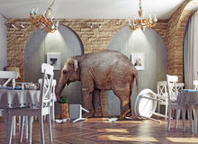 Μια ηρεμία ελεφάντων στο εστιατόριο ελεύθερη απεικόνιση δικαιώματος