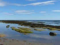Μια θερινή σκηνή στην ακτή Βόρεια Θαλασσών Στοκ Φωτογραφίες