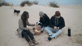 Μια καλή οικογένεια στηρίζεται στην παραλία Ο μπαμπάς, mom, η κόρη και το σκυλί τακτοποίησαν ένα πικ-νίκ απόθεμα βίντεο