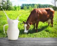 Μια κανάτα γυαλιού του γάλακτος με τον παφλασμό στο υπόβαθρο της αγελάδας στοκ εικόνα
