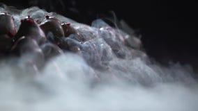 Μια κινηματογράφηση σε πρώτο πλάνο μιας φράουλας στη σοκολάτα μέσω της οποίας ο καπνός είναι διεσπαρμένος απόθεμα βίντεο
