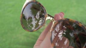 Μια κινηματογράφηση σε πρώτο πλάνο των θηλυκών γυαλιών ηλίου που απεικονίζουν τους φοίνικες φιλμ μικρού μήκους