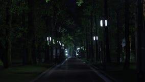 Μια κλίση στα μεσάνυχτα απόθεμα βίντεο