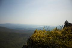 Μια κορυφή ο κόσμος στοκ εικόνες