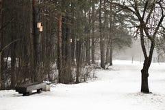 Μια κρύα χειμερινή ημέρα σε ένα πάρκο πόλεων Στοκ φωτογραφία με δικαίωμα ελεύθερης χρήσης