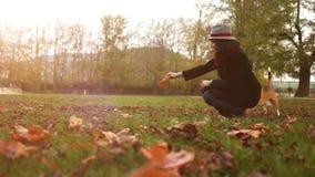 Μια κυρία πειράζει το σκυλί της με μια φθινοπωρινή άδεια περπατώντας έξω φιλμ μικρού μήκους
