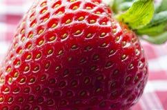 μια κόκκινη φράουλα Στοκ Εικόνες