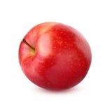 Μια κόκκινη Apple που απομονώνεται σε ένα άσπρο υπόβαθρο Στοκ εικόνα με δικαίωμα ελεύθερης χρήσης