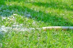 Μια λαστιχένια μάνικα με το νερό που ρέει από μια σωλήνωση για το πότισμα της πράσινης χλόης στοκ φωτογραφία με δικαίωμα ελεύθερης χρήσης