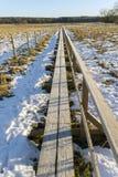Μια μακριά γέφυρα για πεζούς Στοκ φωτογραφία με δικαίωμα ελεύθερης χρήσης