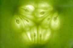 Μακροεντολή φετών αγγουριών στοκ φωτογραφία