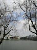 μια ματιά Zhejiang Univerdity Στοκ φωτογραφίες με δικαίωμα ελεύθερης χρήσης