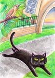 Μια μαύρη περιπλανώμενη γάτα και ένα πουλί ελεύθερη απεικόνιση δικαιώματος