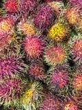 Μια μεγάλη ομάδα ζωηρόχρωμων φρούτων Rambutan Στοκ Φωτογραφίες