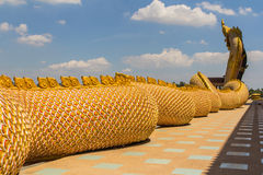 Μια μεγάλη φύλαξη φιδιών Naga Στοκ φωτογραφία με δικαίωμα ελεύθερης χρήσης
