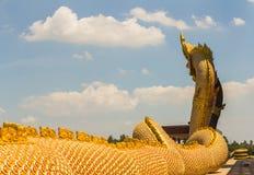 Μια μεγάλη φύλαξη φιδιών Naga Στοκ Φωτογραφία