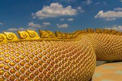 Μια μεγάλη φύλαξη φιδιών Naga Στοκ Φωτογραφίες