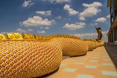 Μια μεγάλη φύλαξη φιδιών Naga Στοκ Εικόνες