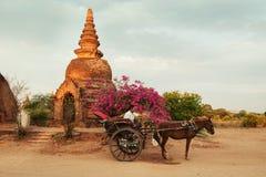Μια μεταφορά αλόγων περιμένει τους τουρίστες σε Bagan Στοκ φωτογραφία με δικαίωμα ελεύθερης χρήσης
