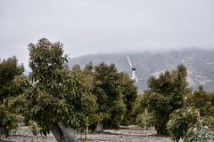 Μια μηχανή αέρα σε ένα αγρόκτημα αβοκάντο, 1 στοκ εικόνες