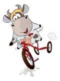 Μια μικρά αγελάδα και ένα τρίκυκλο cartoon διανυσματική απεικόνιση