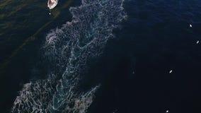 Μια μικρή βάρκα μηχανών είναι γρήγορη στο νερό Γύρος γιοτ τουριστών, μεταφορά νερού, κυκλοφορία, άδεια διακοπές μισθώματος στο σκ απόθεμα βίντεο